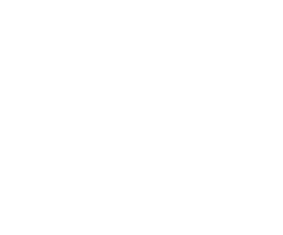 logo-etnic-big-inverted560